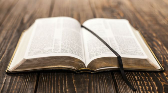 "What is a ""Whole Bible Perspective""?"